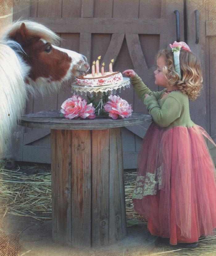 Картинки лошади поздравления с днем рождения, для